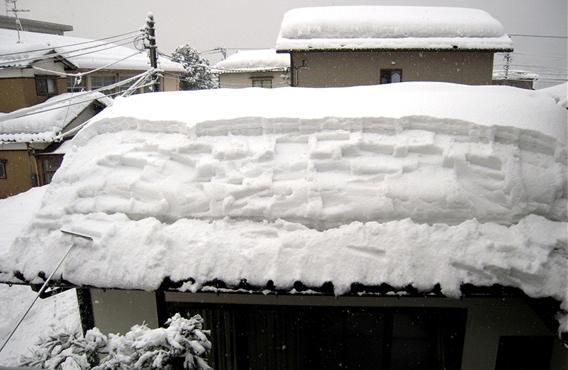 降り積もる雪 雪 雪 また雪よ 2010.01.25_c0213599_22224495.jpg