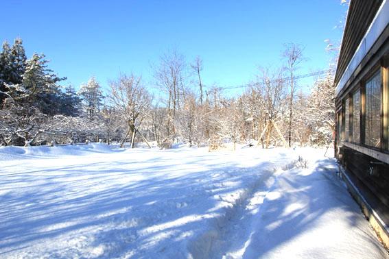 真冬の快晴_e0054299_9372267.jpg