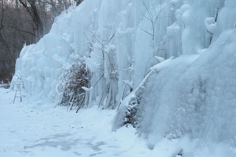 冬眠_f0091207_071127.jpg