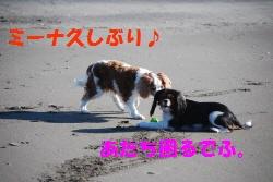 c0136838_2121308.jpg