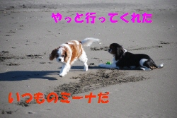 c0136838_21214231.jpg