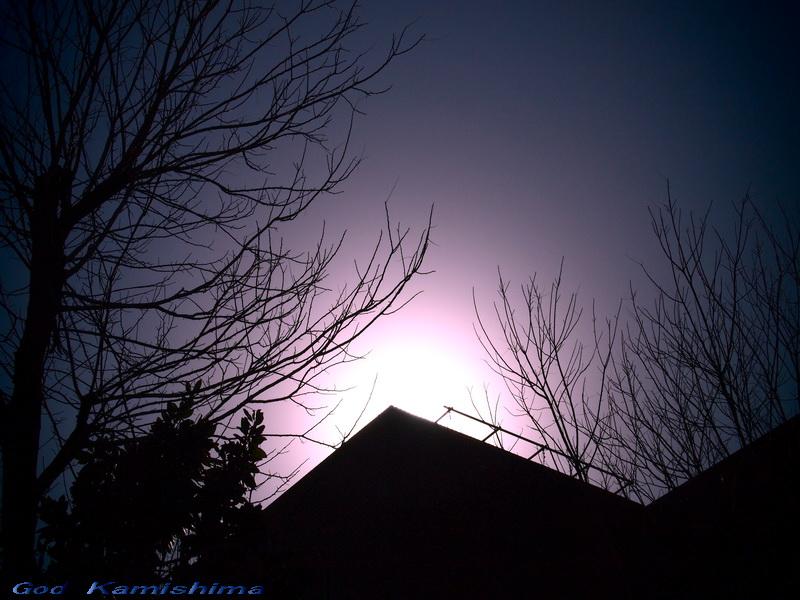 冬陽_f0079943_13392023.jpg