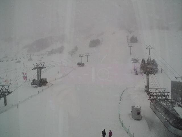 雪が降ってきたよ_c0151965_13485422.jpg