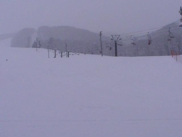また雪_a0140584_944633.jpg