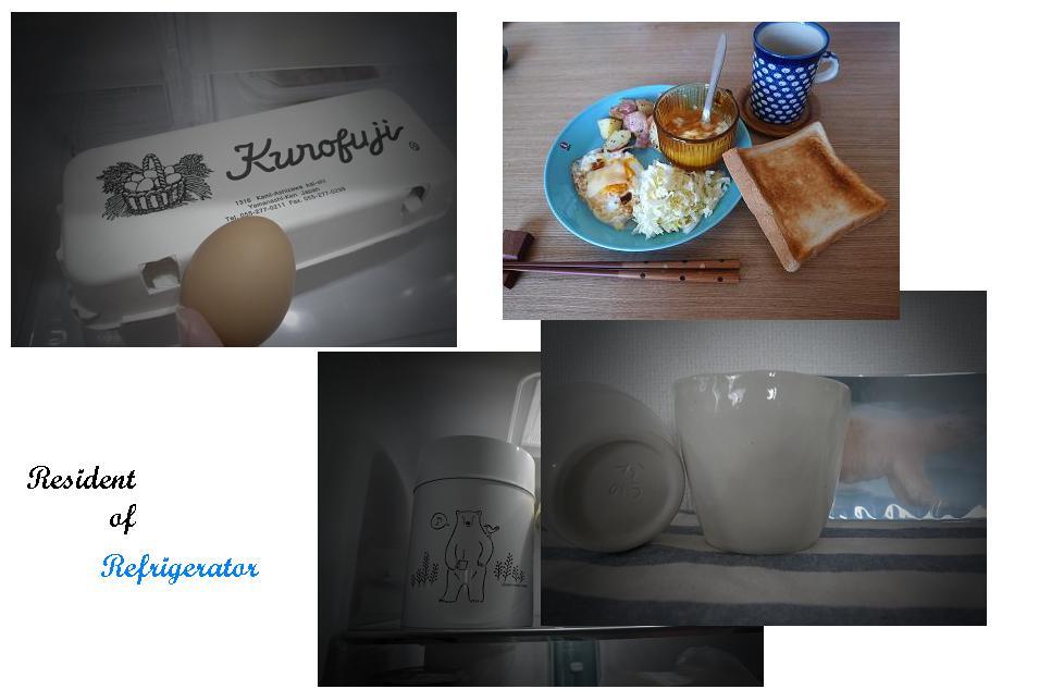 冷蔵庫の住人_a0188798_16492765.jpg