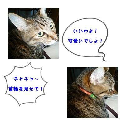 d0057701_9591936.jpg
