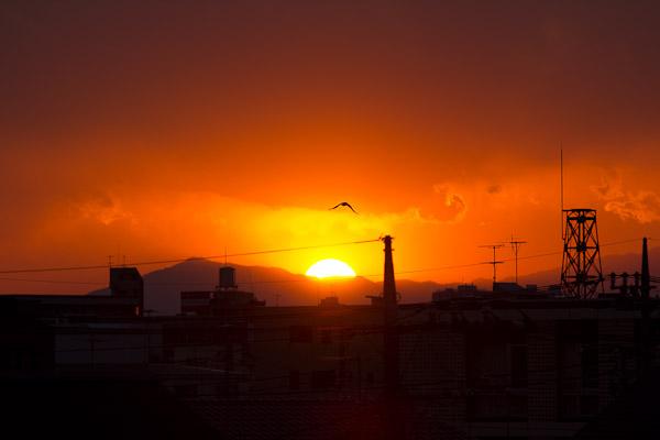 今日の夕日_f0077521_012959.jpg