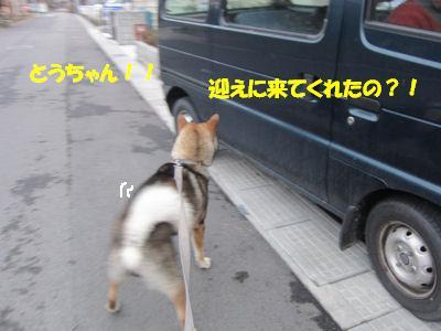 f0143123_20201867.jpg
