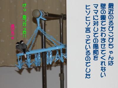 b0158061_1934743.jpg