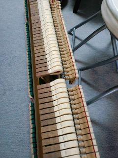 今日はピアノの調律ディでした★_f0180576_19594517.jpg