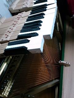 今日はピアノの調律ディでした★_f0180576_19594524.jpg
