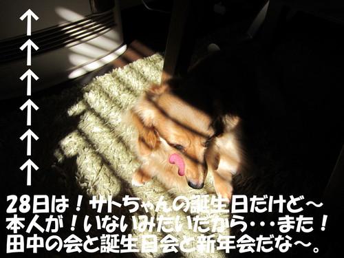 b0200291_17261515.jpg