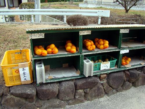 因島の因北小学校_a0047200_2215653.jpg