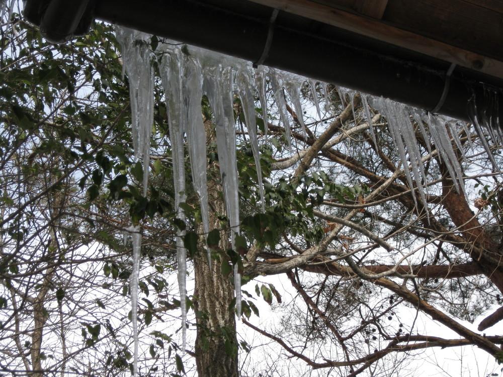 まだまだ雪の中_c0218213_14113768.jpg