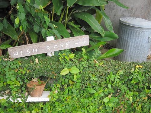 沖縄の旅日記。その3._b0157216_22133520.jpg