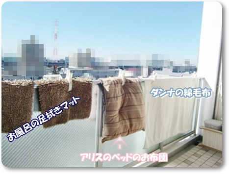 f0182121_97375.jpg