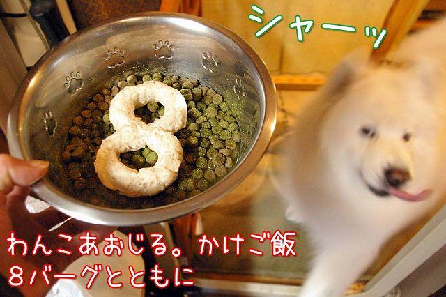 誕生日ごはん(完結編)_c0062832_1311198.jpg