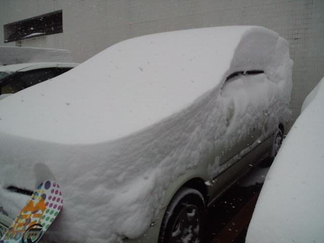 昨日雪かきしたのに_c0151965_11271057.jpg