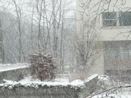 ある雪の日_e0195766_4231848.jpg