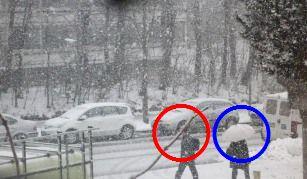 ある雪の日_e0195766_4233929.jpg