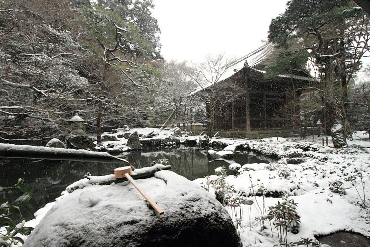 雪の蓮華寺_e0051888_2110660.jpg