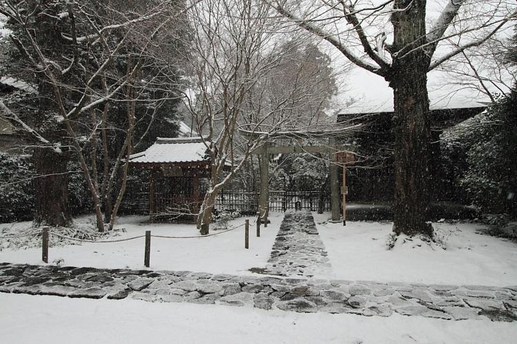 雪の蓮華寺_e0051888_21124951.jpg