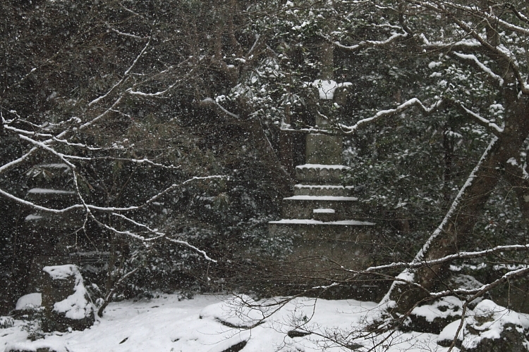 雪の蓮華寺_e0051888_218970.jpg