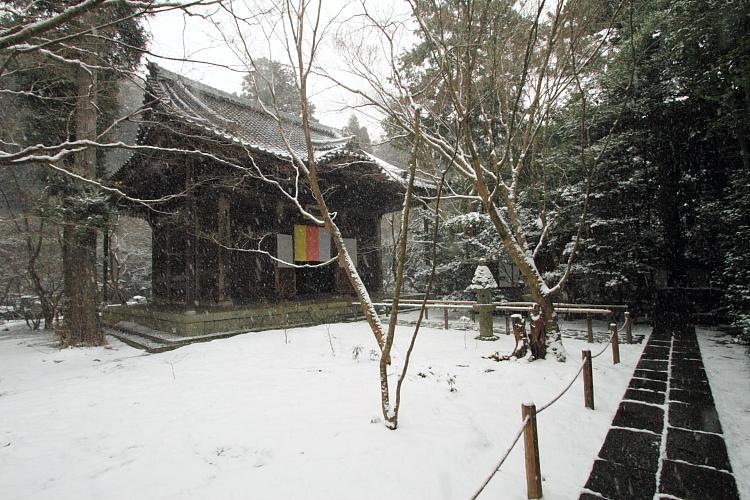 雪の蓮華寺_e0051888_219635.jpg