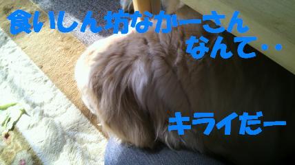 b0206300_14322073.jpg