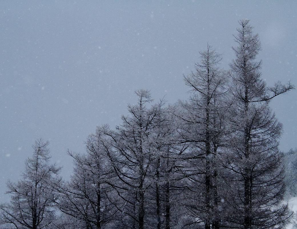 福島県耶麻郡猪苗代町 冬の箕輪山_d0106628_722996.jpg