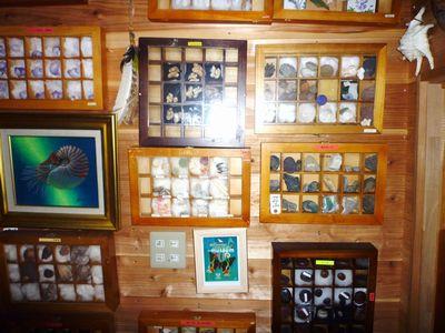 漂着物博物館(1) 石井忠氏に学ぶ超整理学_c0222861_1237268.jpg