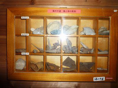 漂着物博物館(1) 石井忠氏に学ぶ超整理学_c0222861_1240234.jpg