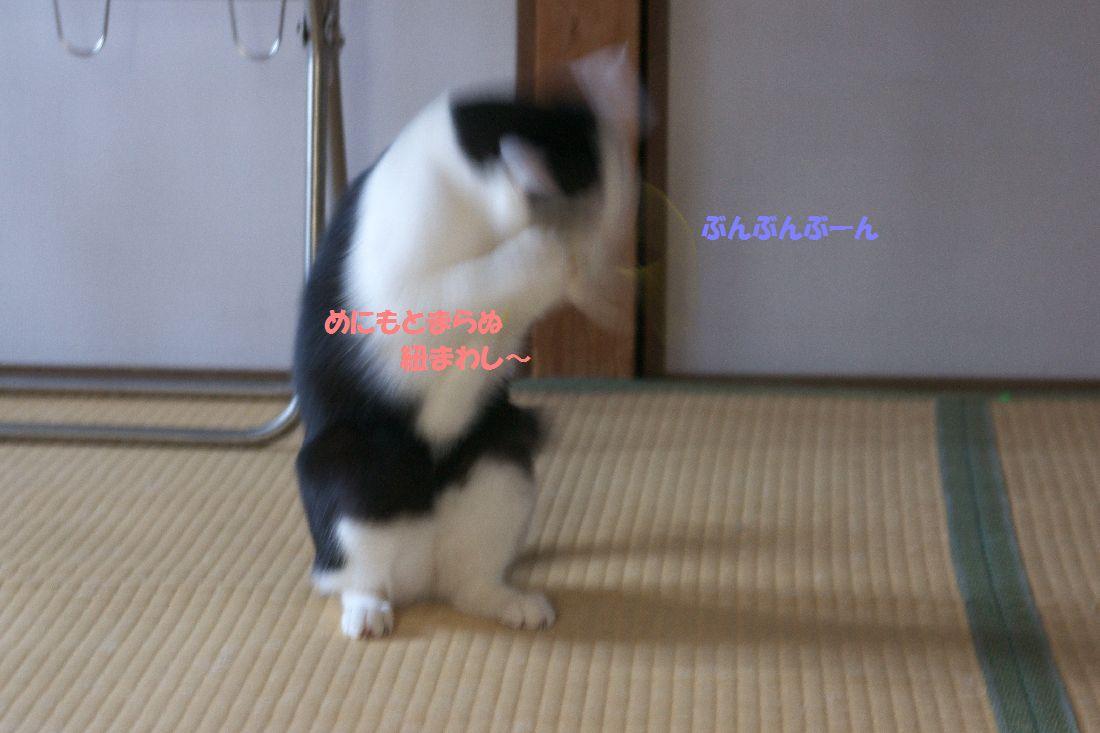 f0197682_23203865.jpg
