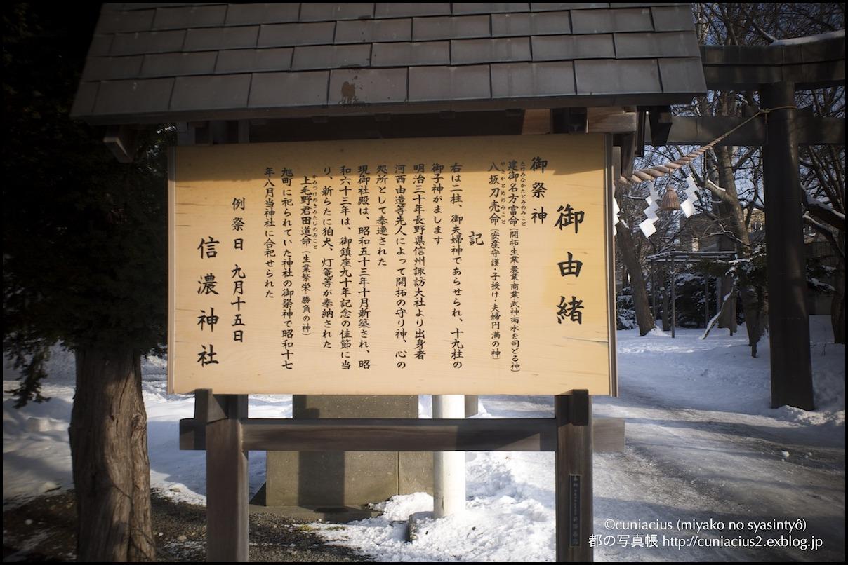 信濃神社3_f0042194_15115975.jpg
