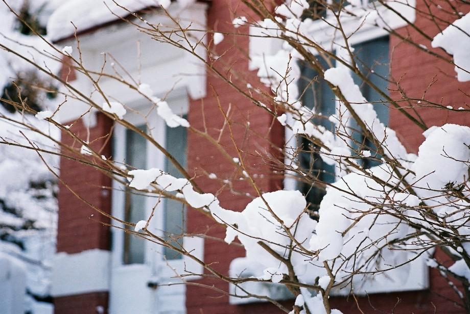 函館の観光名所の冬景色_a0158797_0435830.jpg