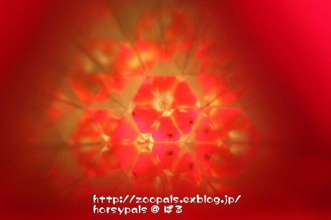 f0158697_2202455.jpg