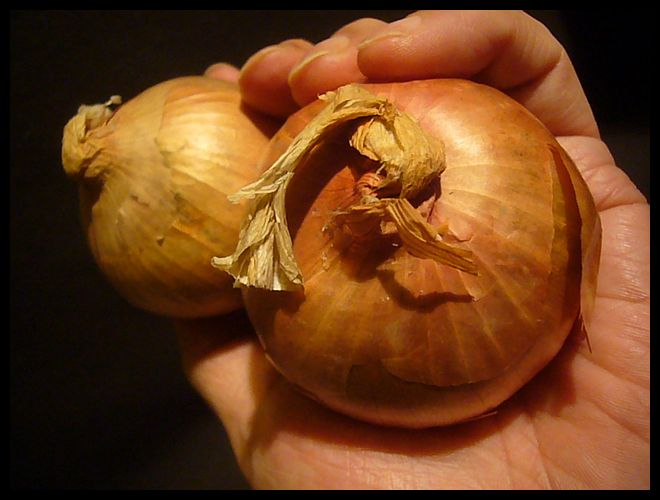 【オニオン】L\'oignon de Roscoff「ロスコフの玉ねぎ」(AOC)フランス_a0014299_1774436.jpg