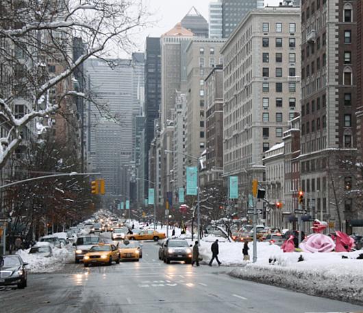 """NYのパーク・アベニューに大きなバラのパブリック・アート、""""The Roses""""展示中_b0007805_1528316.jpg"""