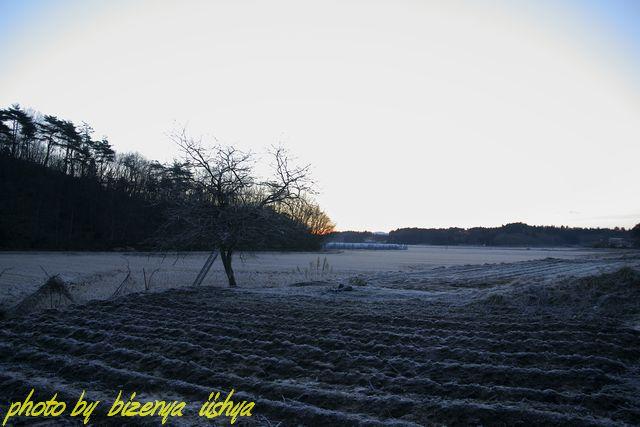 『里山の冬』_d0086248_7403454.jpg