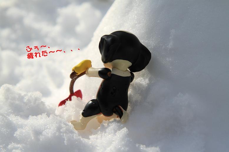ミニコ劇場(!?)第2弾♪ ^^_c0145250_1531271.jpg