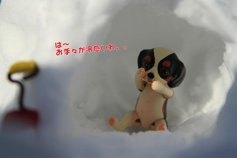 ミニコ劇場(!?)第2弾♪ ^^_c0145250_1594889.jpg
