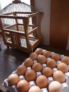 玄関に卵。_f0121167_18291626.jpg