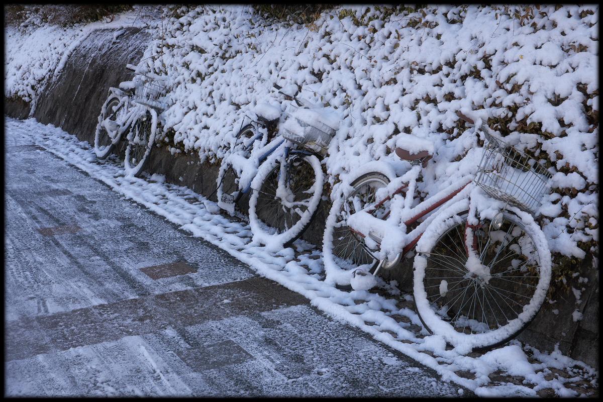 雪景色 <自転車>_f0021869_2232920.jpg