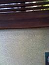 撞木館の後_b0207676_2305283.jpg