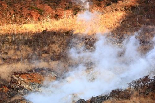 炎の地獄_b0177584_2272857.jpg