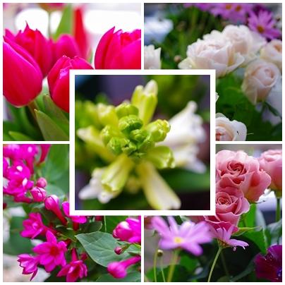 森の工房 hana花*marche!!_c0207890_0583936.jpg