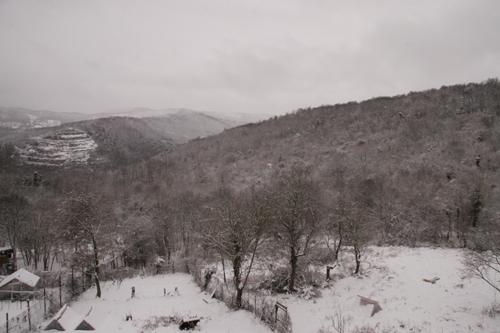 まったり冬の日曜日の朝_f0106597_20255343.jpg