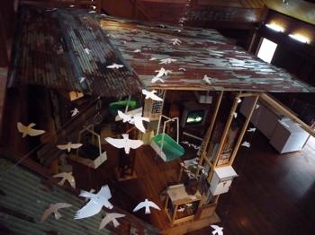 幸せの白い鳥プロジェクト in イフガオ 「原始の森にホワイト・バードが戻ってきた日」_b0128901_13445142.jpg