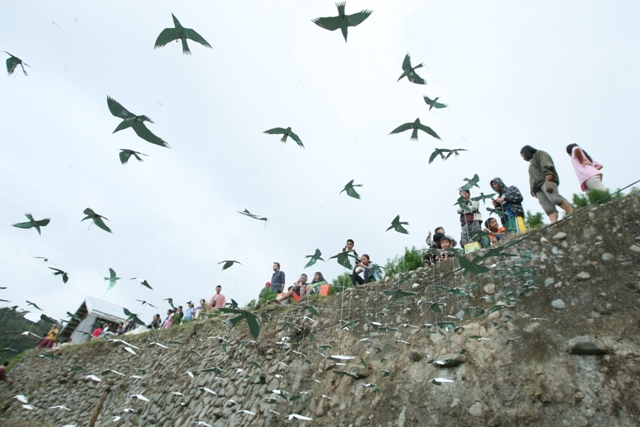 幸せの白い鳥プロジェクト in イフガオ 「原始の森にホワイト・バードが戻ってきた日」_b0128901_13555012.jpg