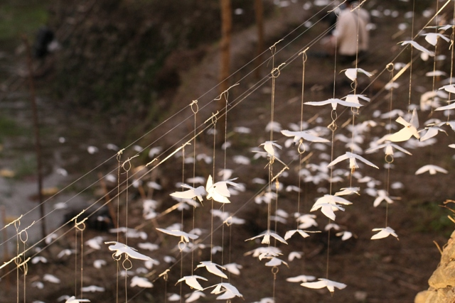 幸せの白い鳥プロジェクト in イフガオ 「原始の森にホワイト・バードが戻ってきた日」_b0128901_13573174.jpg